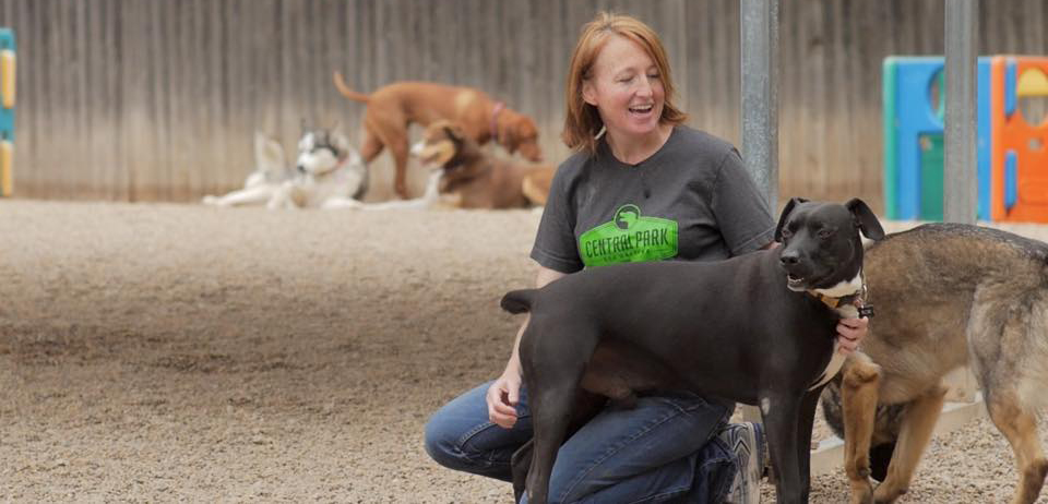 April Campbell, Central Park Dog Daycare