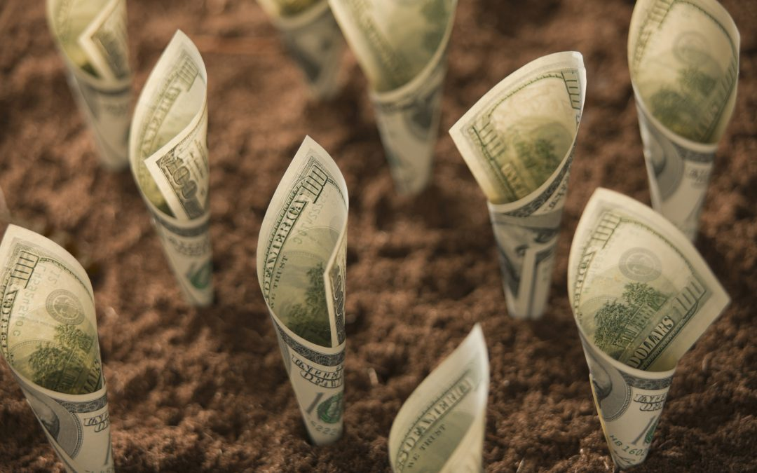 Growth Eats Cash